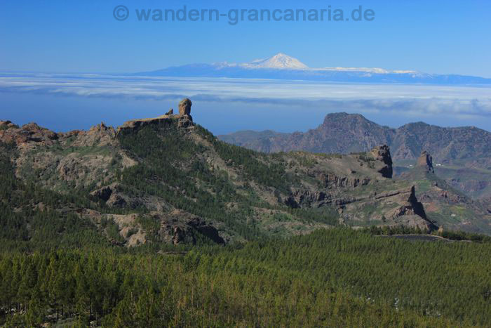 Guided hiking tour to the center of Gran Canaria